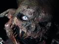 009 Horror Nights Ep 2014